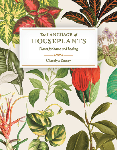 The Language of Houseplants